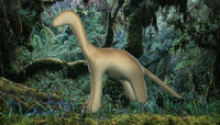 free diplodocus animal base 3d model