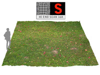 3d model lawn apple orchard 16k