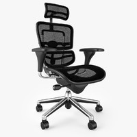 3d raynor ergohuman executive chair model