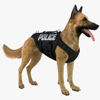 belgian shepherd dog police 3d obj