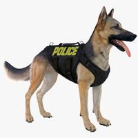 3d belgian shepherd dog police