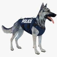 belgian shepherd dog police max