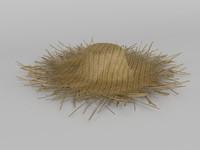 straw hat 3d max