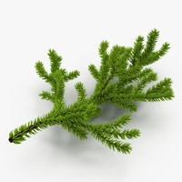 christmas branch 3d max