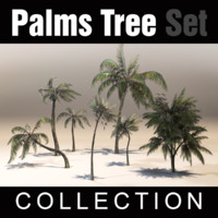Plams Tree Collection Set
