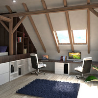 interior home office attic max