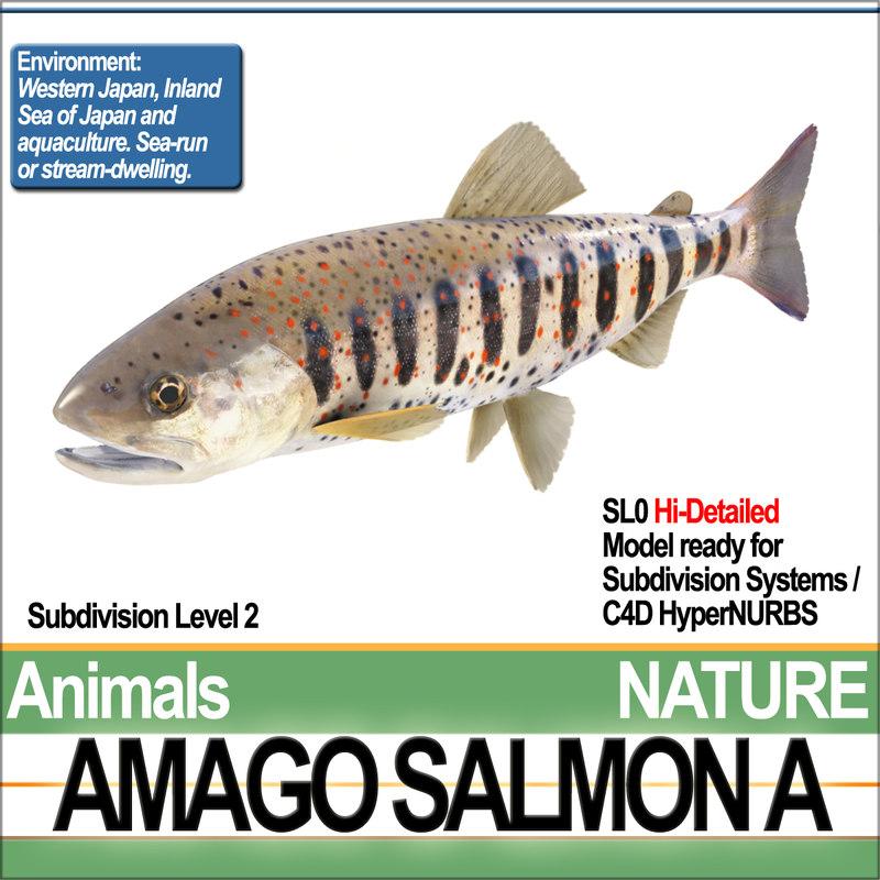 NatureAmagoSalmonAA1.jpg