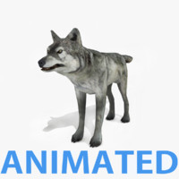 rigged animations render 3d model