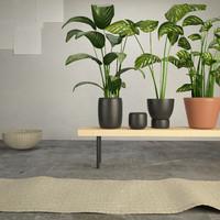 maya ikea plants
