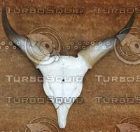 Horn_Texture_0004