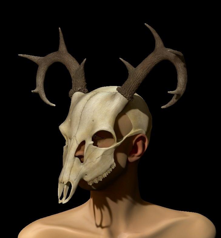 deer color 2.jpg