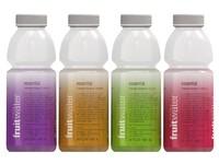 Fruit Water Bottles
