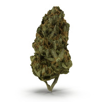 3ds cannabis bud