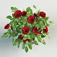 3d model rose pot
