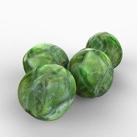 realistic brussel sprouts 3d model