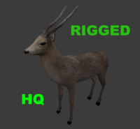 3d royal deer rigged games model