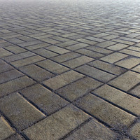 paving bricks max