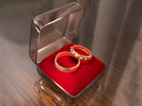 3d wedding rings model