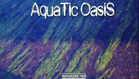 Aquatic Oasis Soundscapes - Water FX - Nova Sound