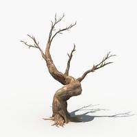 3d model scary tree dry