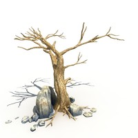Dry Tree and Rock 02