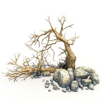 Dry Tree and Rock 03