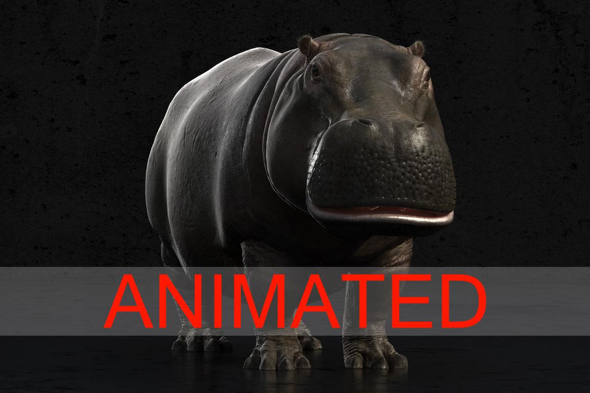 Hippo_4asedf.jpg