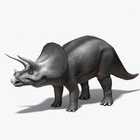 max triceratops cretaceous ceratopsidae ceratopsid