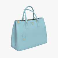 prada bag handbag max