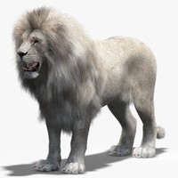 Lion White (2) (Fur)