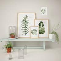 plants pictures 3d max