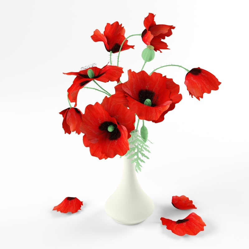 01_previews_red_poppies.jpg