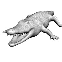 3d model crocodile