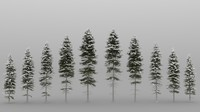 3ds max 10 picea tree