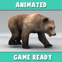 3d rigged brown bear animation