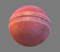cricket ball max