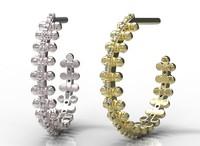 3d ring s model