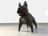 3d model of bulldog dog