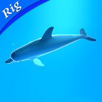 3ds max dolphin animate