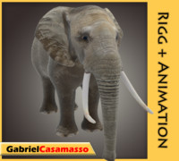 3ds max elephant animation