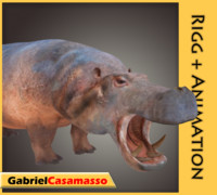 hippopotamus amphibius 3d model