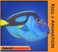 3d blue tang