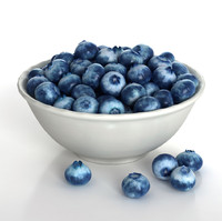 3d blueberries berries model