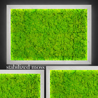 3d model fytowall moss
