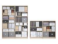 billy bookcase birch veneer 3d max