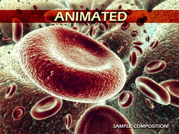 sample_animated.jpg