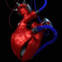 3d heart steampunk model