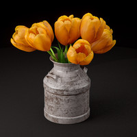 tulips old milk 3d max