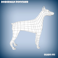 base mesh doberman pinscher 3d obj