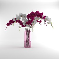 3d orchid vase glass model